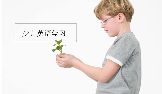 杭州少儿英语培训.jpeg