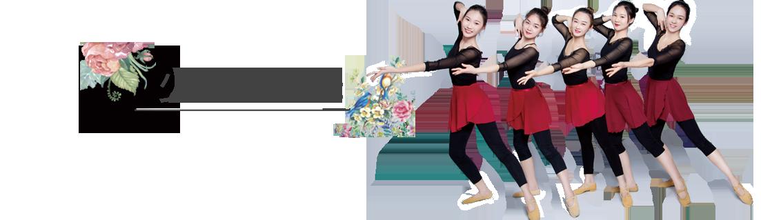 少儿中国舞.png
