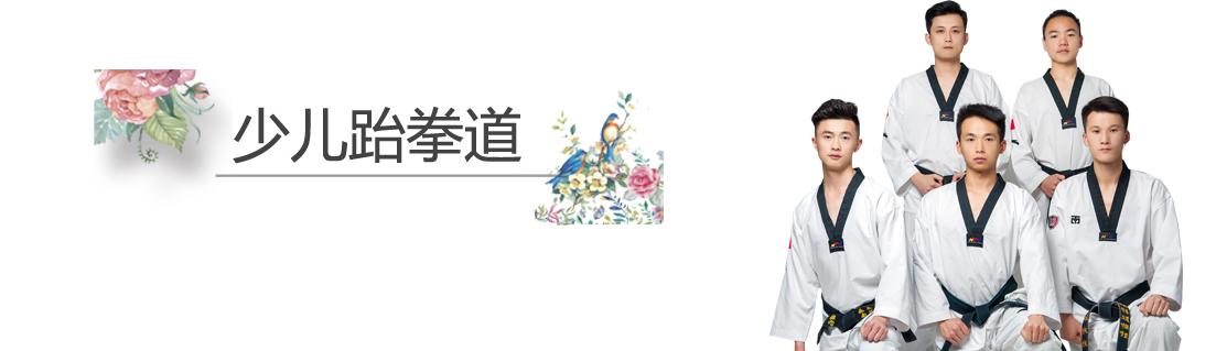 杭州艺朝艺夕少儿跆拳道.jpeg
