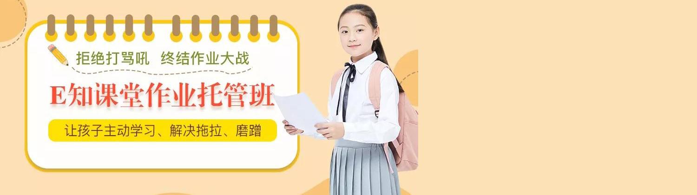 合肥艺朝艺夕秋季作业托管班
